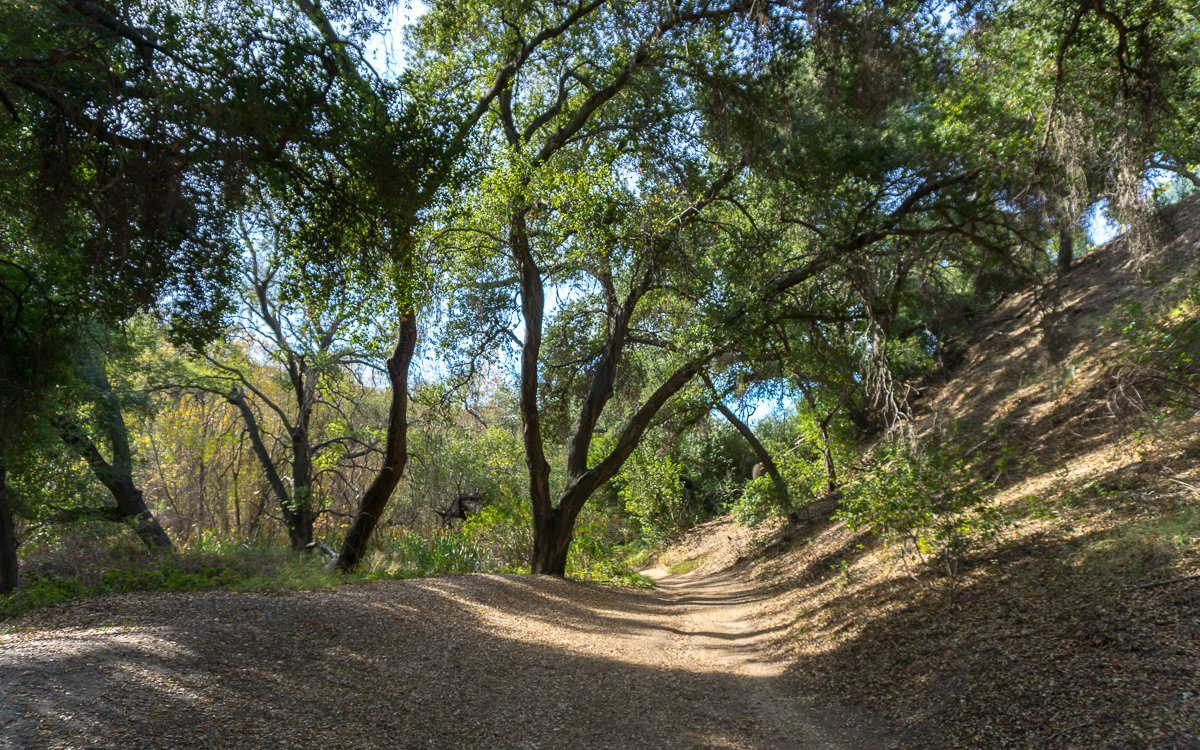 Hiking Trail in Whiting Ranch Wilderness Park