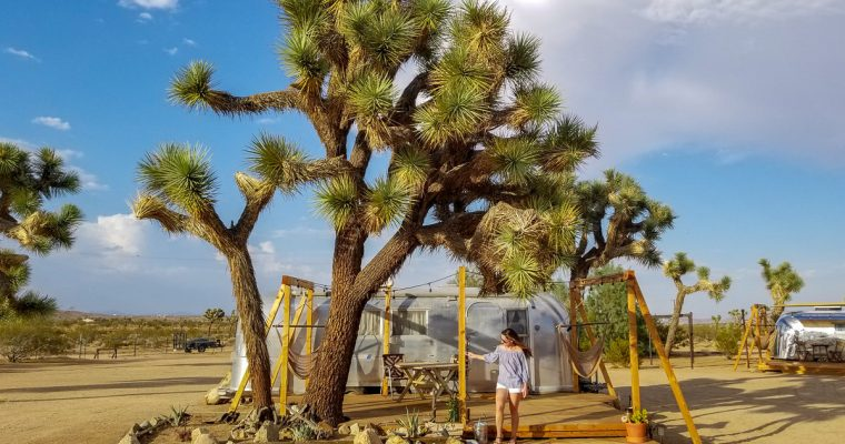 Staying at Joshua Tree Acres