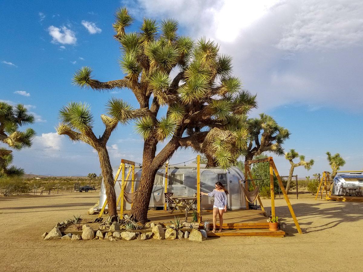 The Joshua Tree Acres Airstream