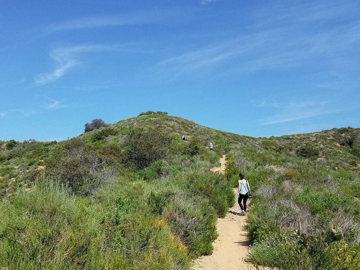 Hiking trail in Laguna Coast Wilderness Park