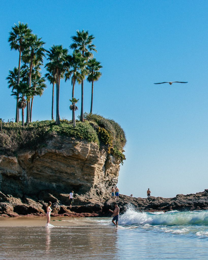 A view of the south side of Crescent Bay Beach with palm trees on top of the cliff.