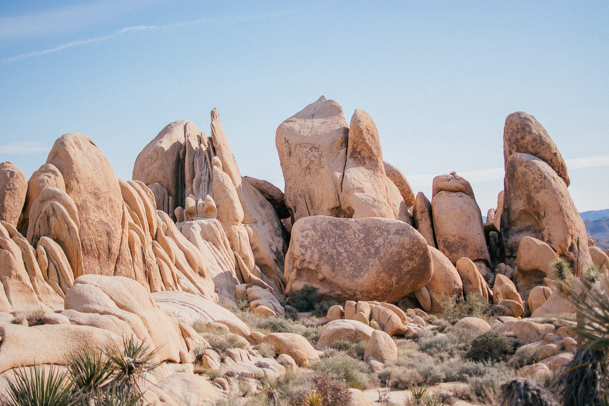 Boulders are an interesting thing to see in Joshua Tree National Park