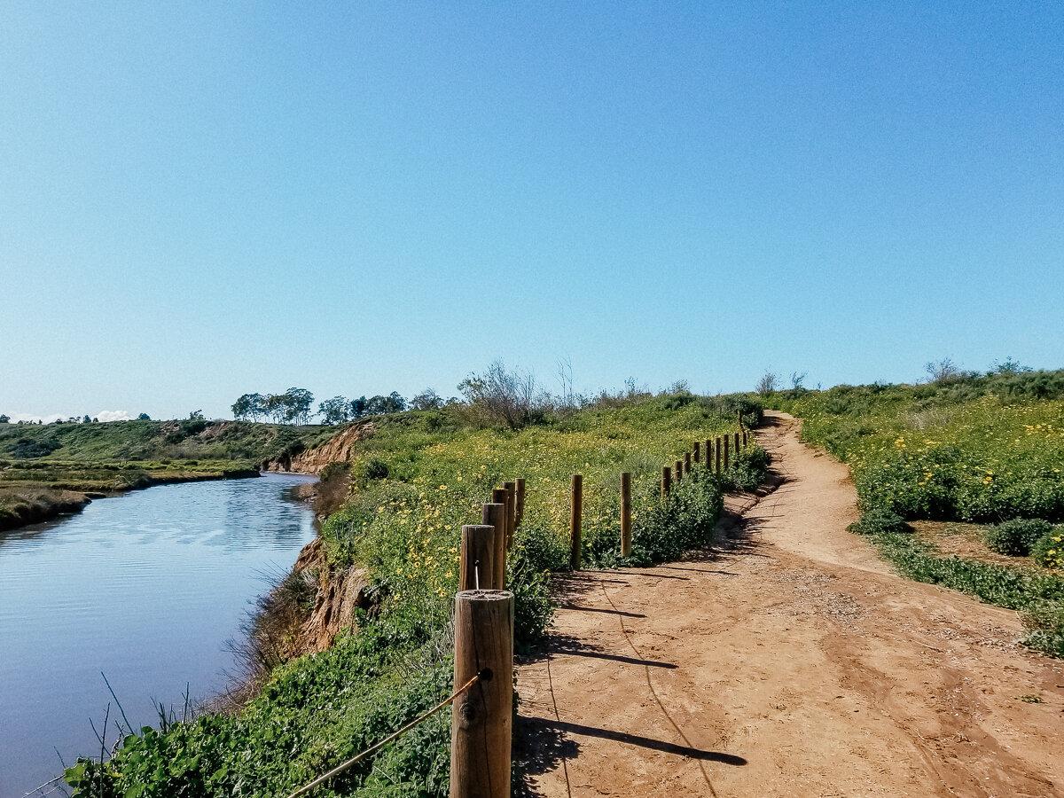 Hiking trail at the Upper Newport Bay Nature Preserve