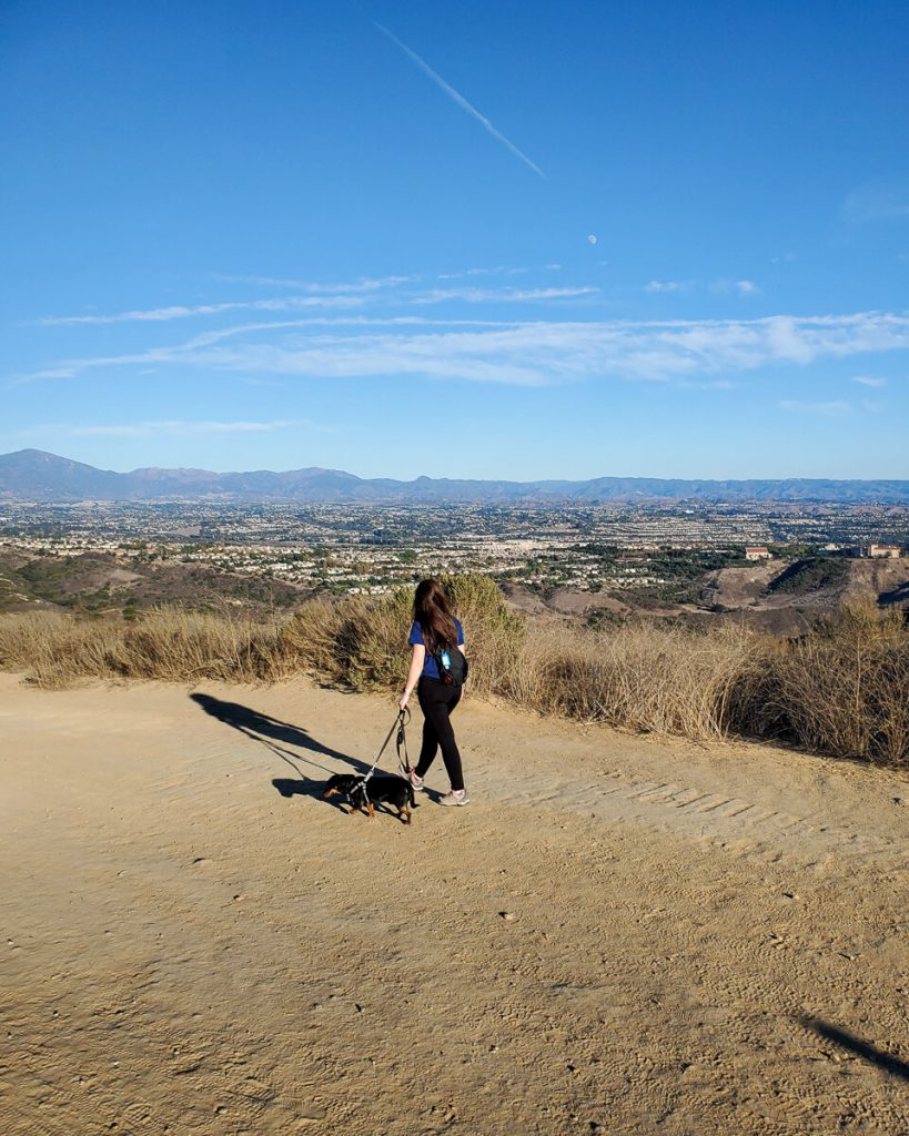 Hiking with the dog on West Ridge Trail