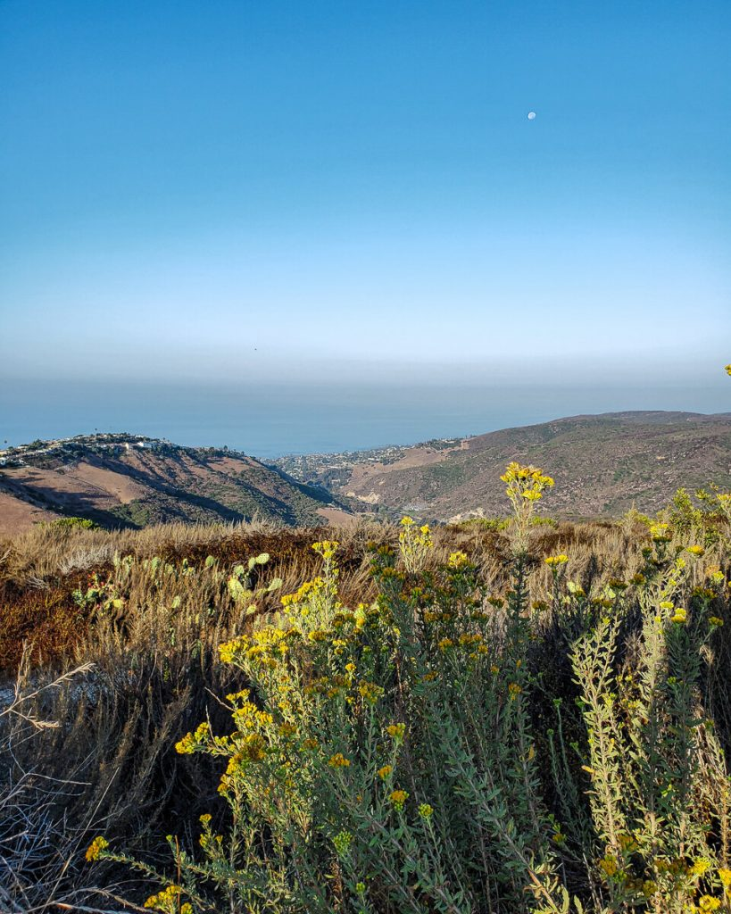 View over Laguna Beach from Top of the World