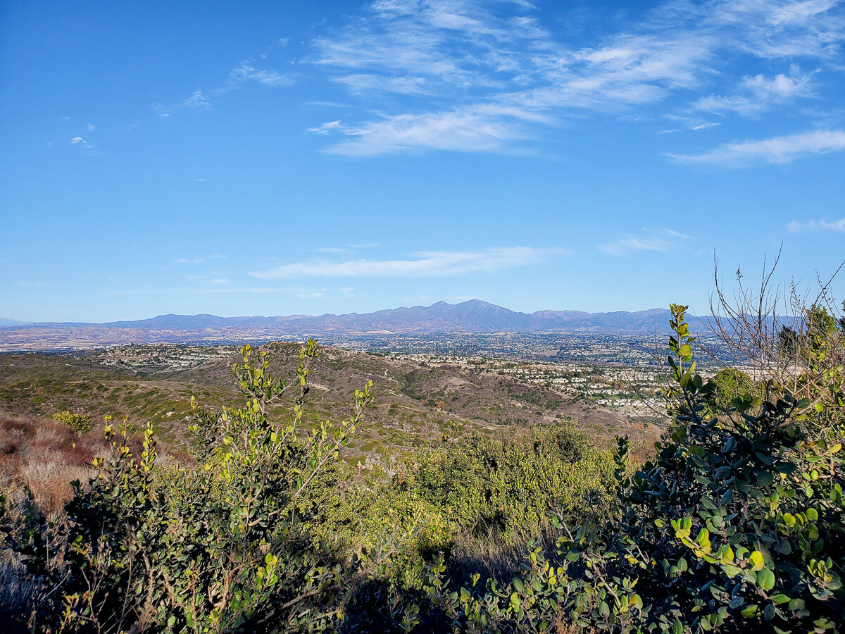 View of Orange County from Top of the World